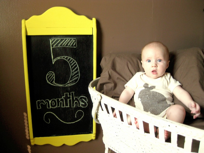 5 Month Baby Photoshoot