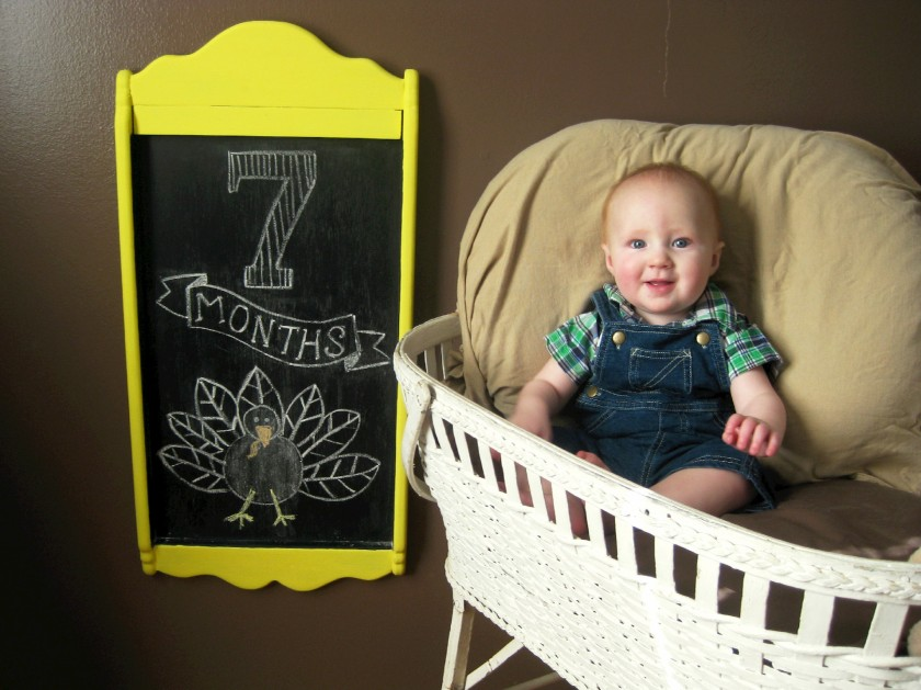 7 Month Baby Photo
