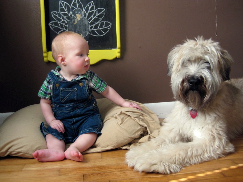 7 Month Baby Photo with Puppy