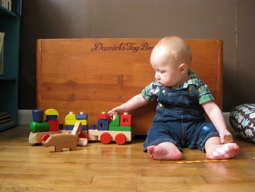 7 Month Baby Photo with Toybox