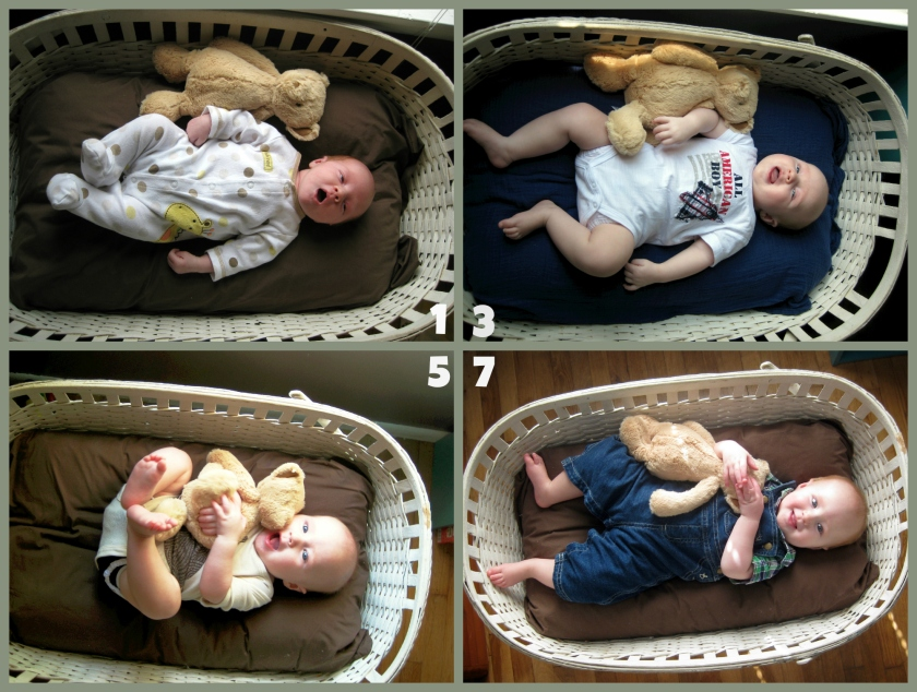 1-7 Months Baby Photos