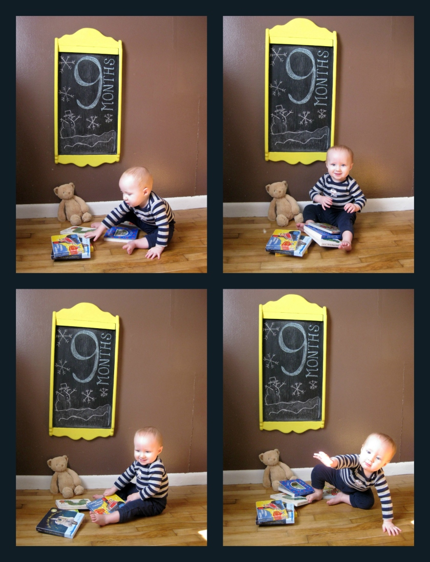 9 Month Photo Collage