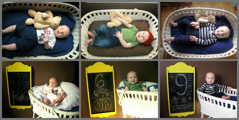 Baby Photo-shoot 3-6-9
